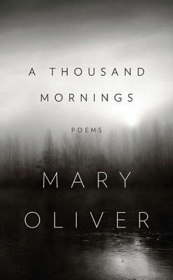 A Thousand Mornings Books