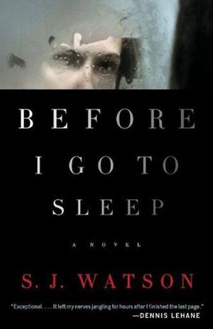 Before I Go to Sleep Books