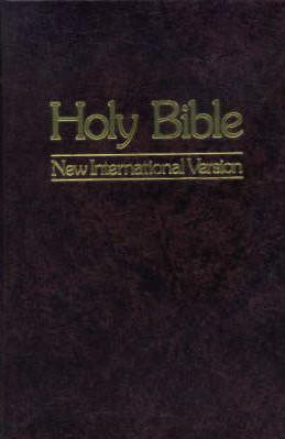 Holy Bible: New International Version Books