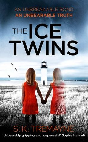 The Ice Twins Books