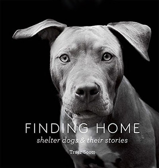 Finding Home: Shelter Dogs and Their Stories Books