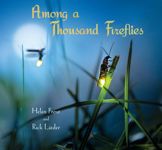 Among a Thousand Fireflies Books