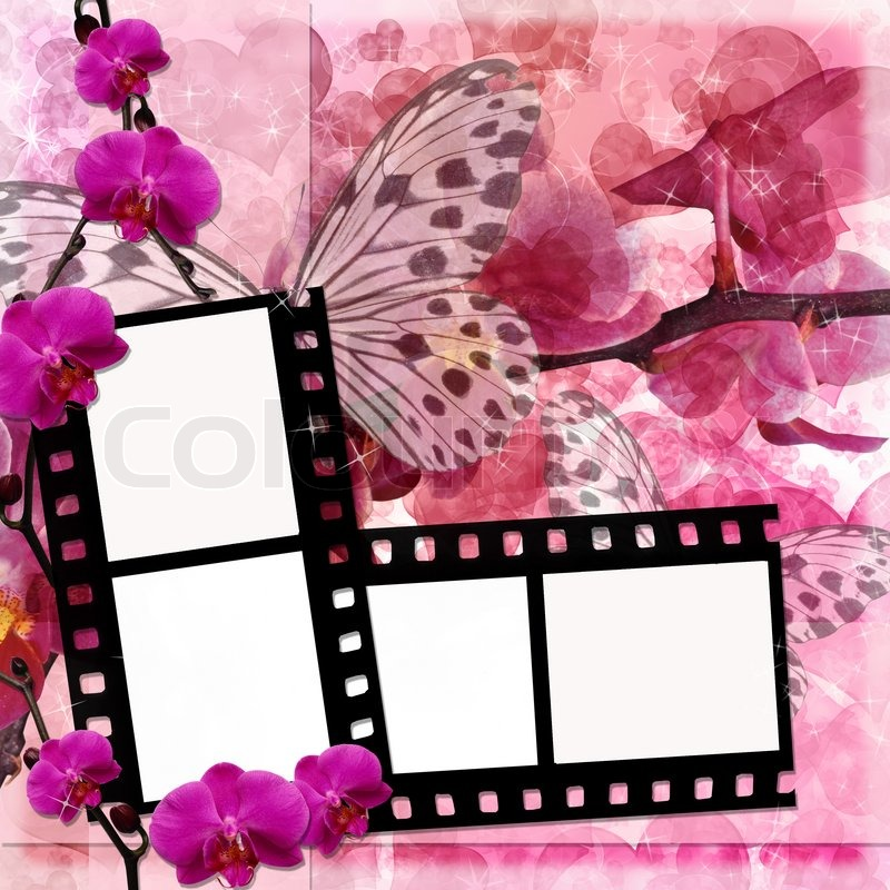 Baby Girl Wallpaper Borders Pink And Purple Butterflies And Orchids Flowers Pink Background With Film
