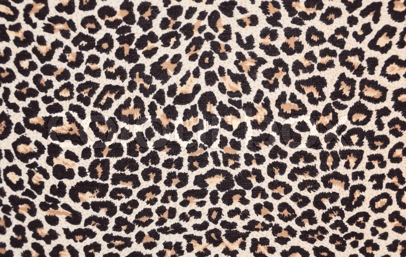 Leopard Animal Print Wallpaper Abstract Texture Of Leopard Skin Stock Photo Colourbox