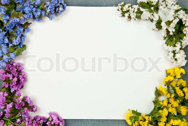 White paper blank on grey background Stock Photo Colourbox