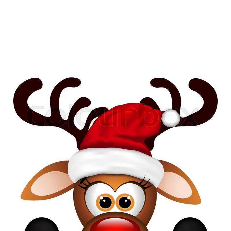 Winter Animal Wallpaper Funny Christmas Reindeer On A White Background Stock