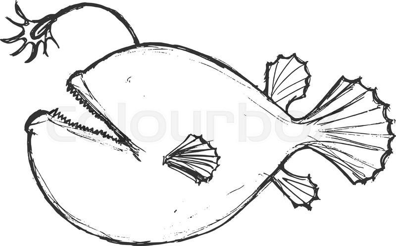 angler fish diagram