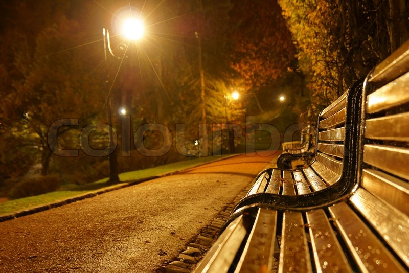 Late Fall Desktop Wallpaper Bench In The Park During The Autumn Season At Night