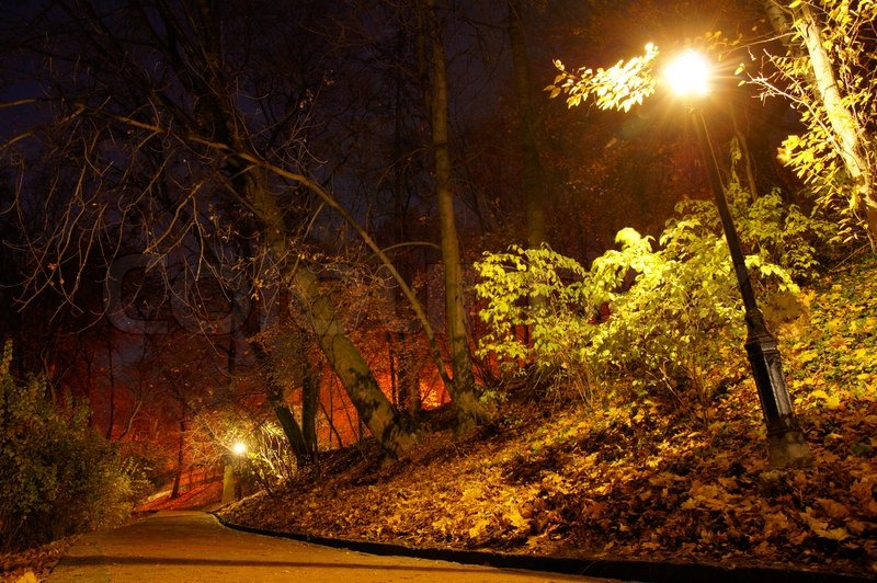 New England Fall Wallpaper Free Illuminated Pavement In Autumn Park Late At Night Stock