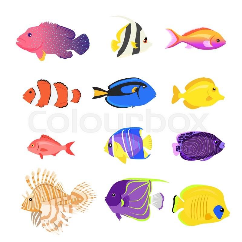 Set of sea fish color design flat Stock Vector Colourbox