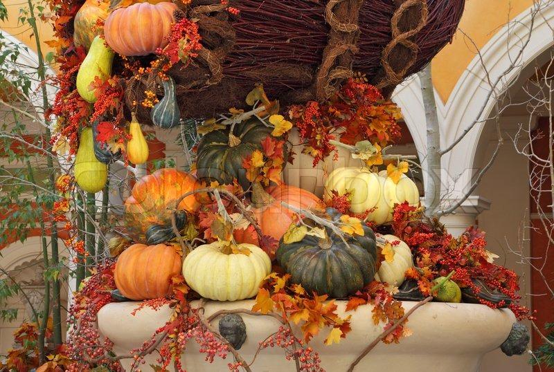 Fall Desktop Wallpaper With Pumpkins Winter Garden In The Lobby Of A Luxury Hotel Celebration