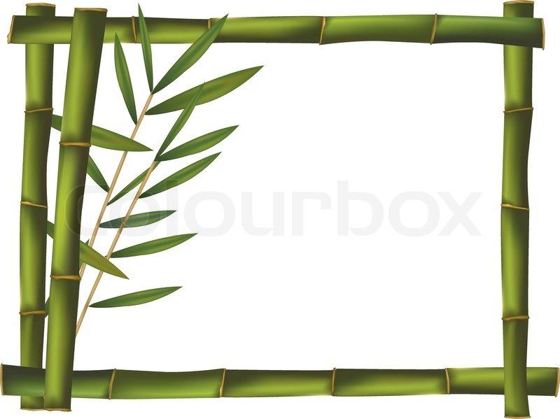 Green bamboo frame made of stems Vector Stock Vector Colourbox - green photo frame