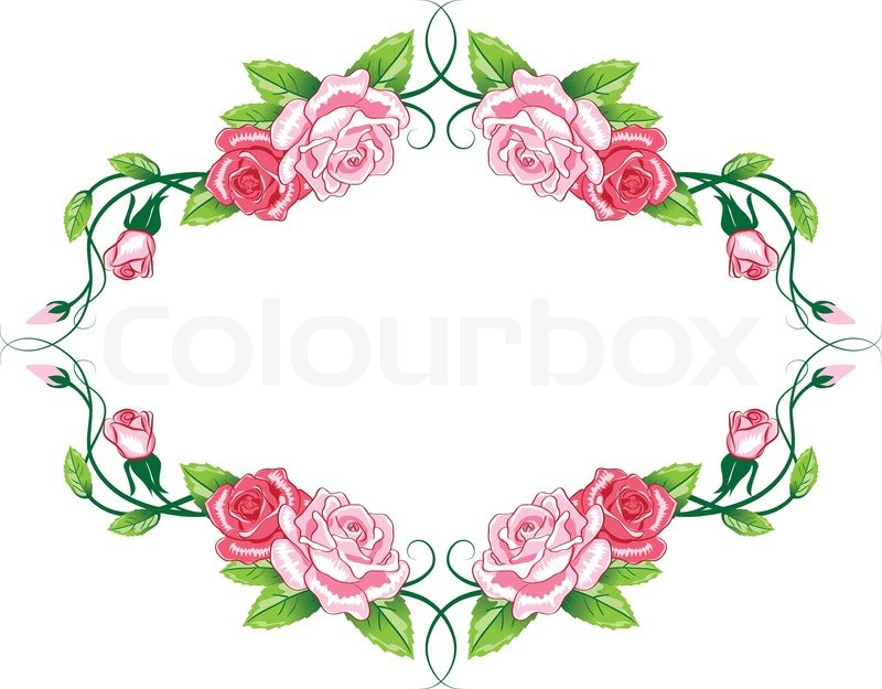 Greeting floral rose card Vector Stock Vector Colourbox