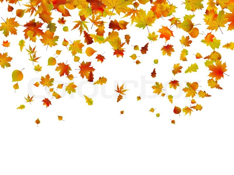 Falling Leaves Hd Live Wallpaper Background Of Autumn Leaves Eps 8 Vector File Included