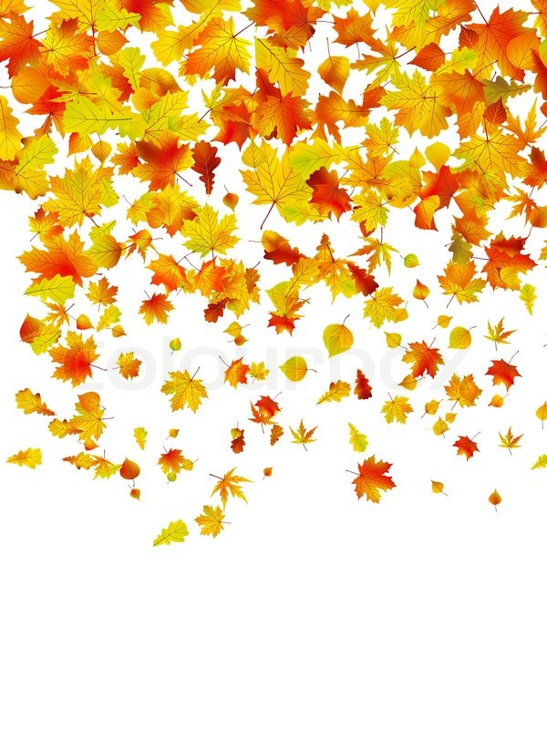 Free Falling Leaves Live Wallpaper Background Of Autumn Leaves Eps 8 Vector File Included