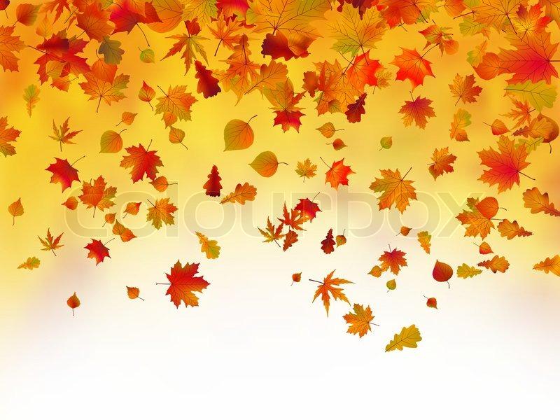 Hd Wallpaper Texture Fall Harvest Fallen Efter 229 Rsblade Baggrund Stock Vektor Colourbox
