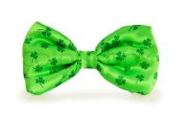 Green bow tie as a concept for St Patrick day | Stock ...