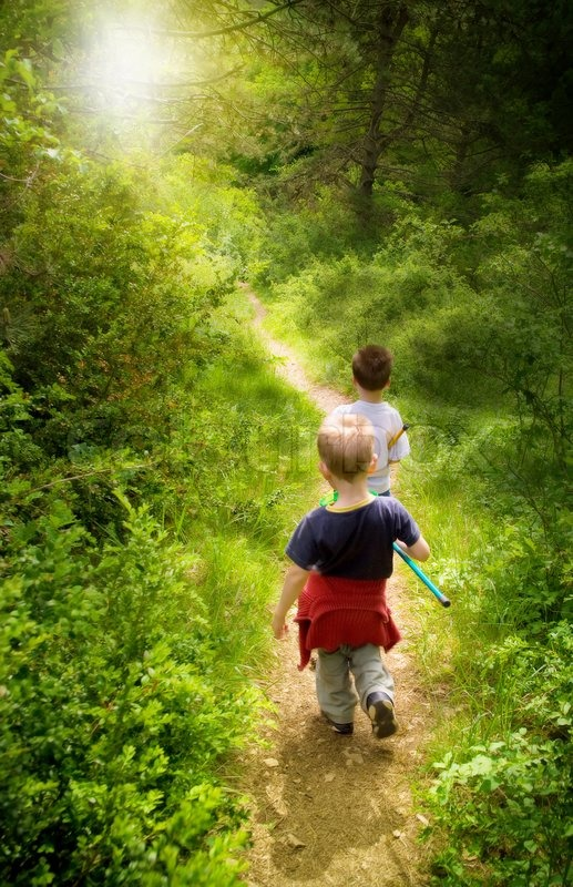Fall Out Boy Flower Wallpaper Two Young Children Walking In Forest Stock Photo Colourbox