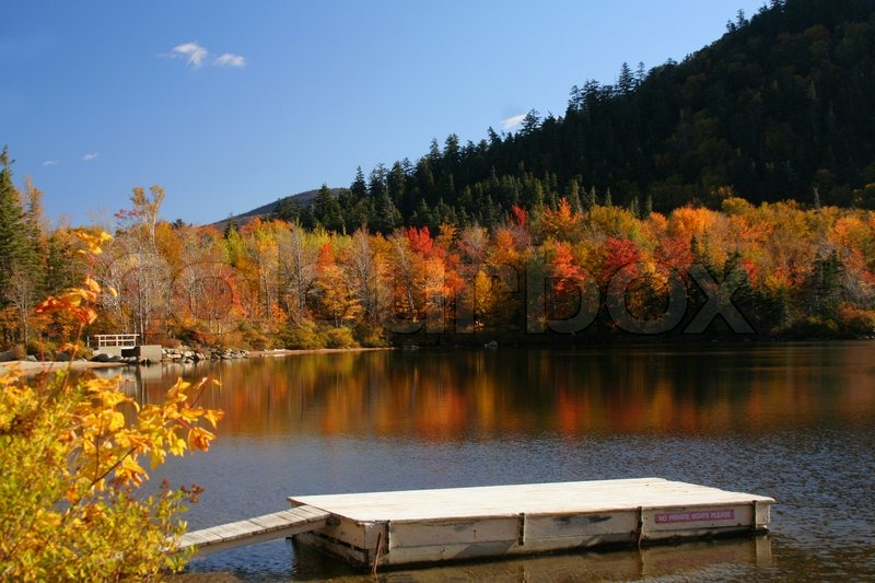 Free Fall Foliage Wallpaper Colorful Autumn Trees Reflected In Stock Photo