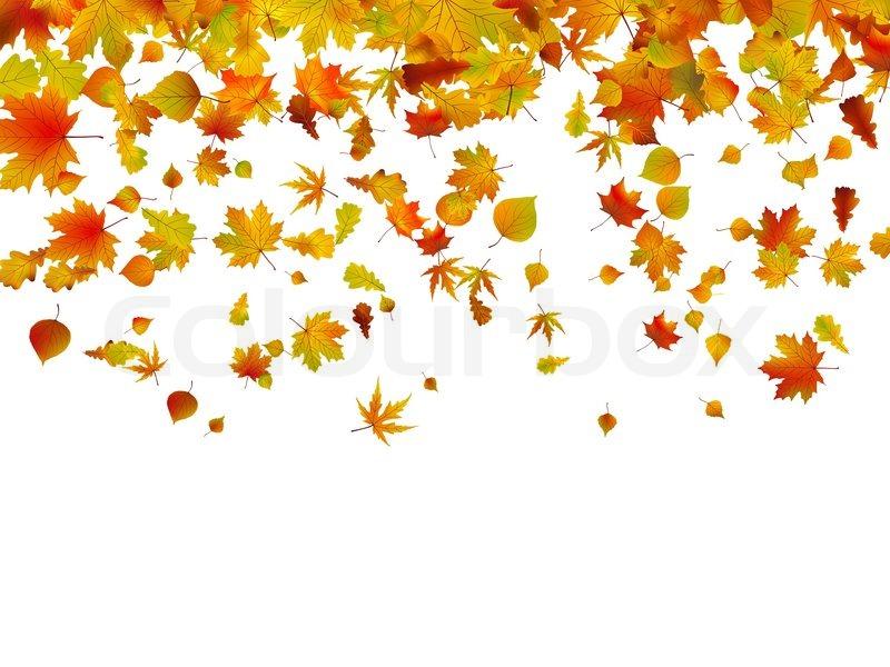 Maple Leaf Wallpaper For Fall Season Hintergrund Der Bl 228 Tter Im Herbst Vektorgrafik Colourbox