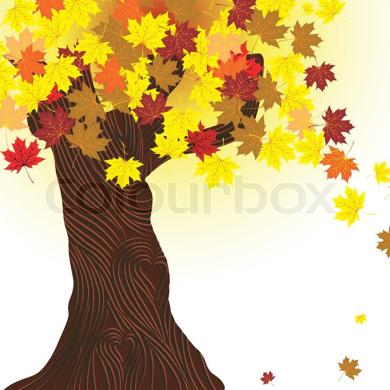 Maple Leaf Wallpaper For Fall Season Beautiful Autumn Tree Vector Maple Background Design