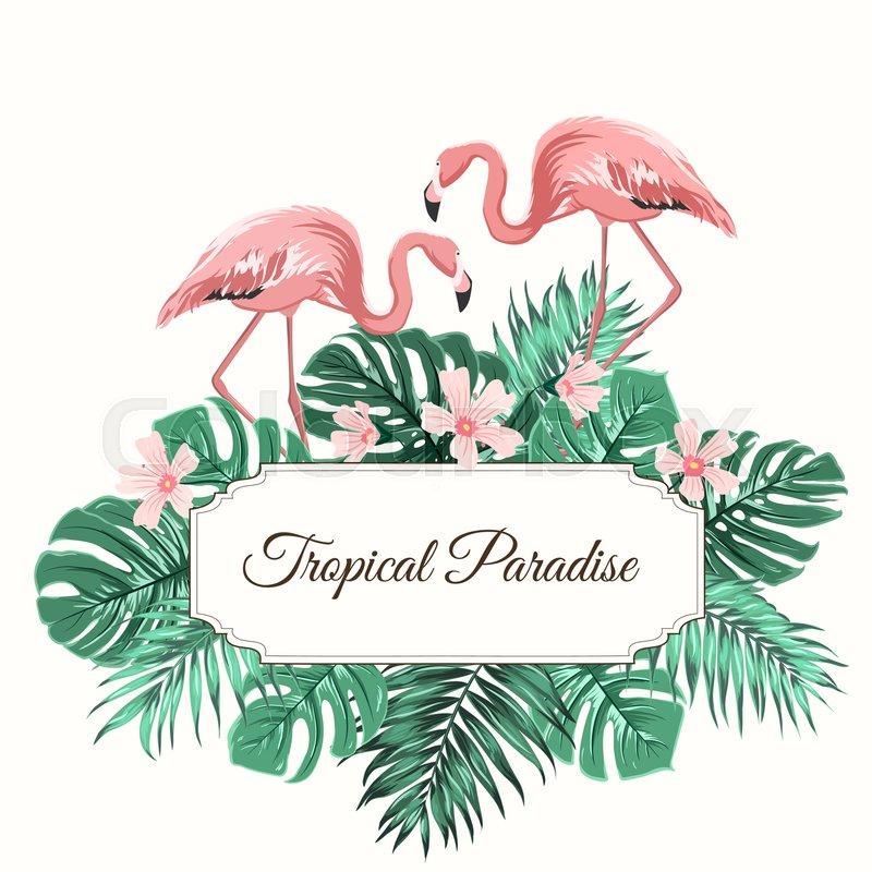 Animal Print Pink Wallpaper Tropical Paradise Composition Rectangular Border Frame