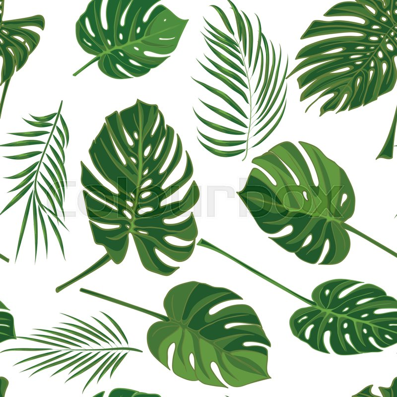 Cute Trendy Wallpapers Seamless Hand Drawn Tropical Pattern With Palm Leaves In