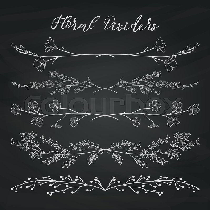 Chalk Drawing Doodle Dividers, Line Borders with Branches, Herbs - chalk borders