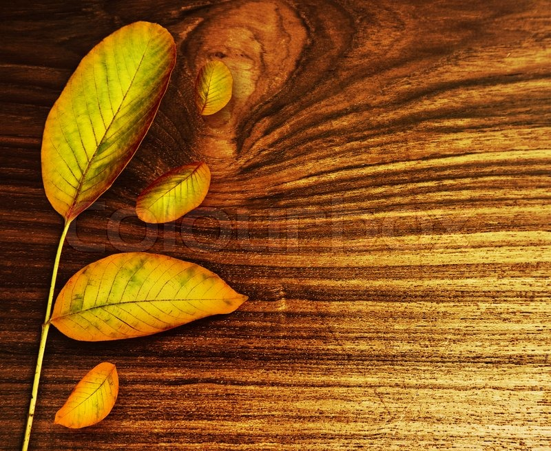 Hd Wallpaper Texture Fall Harvest Autumn Leaves Over Old Wood Background Nature At Fall
