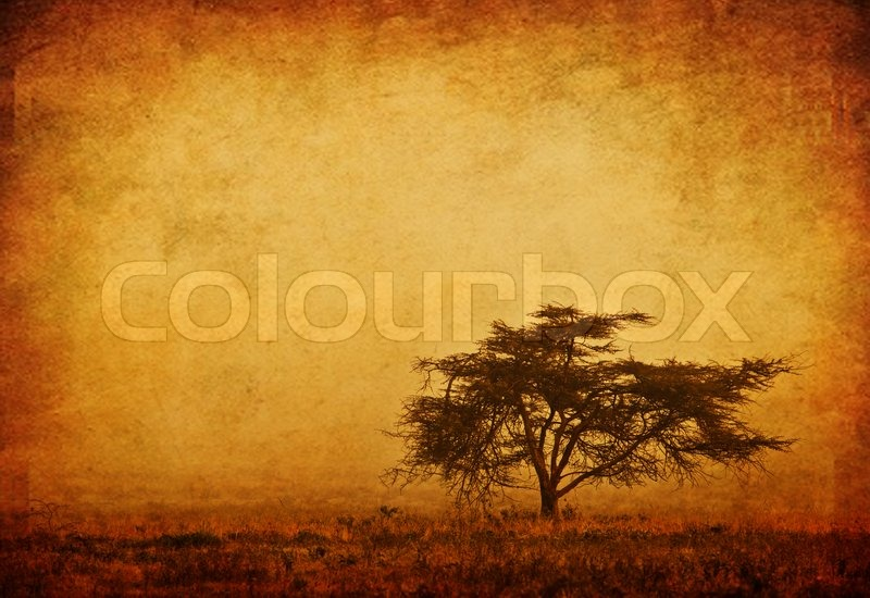 Fall Scripture Wallpaper Lonely Tree In The Mist Grunge Background Nature Autumn