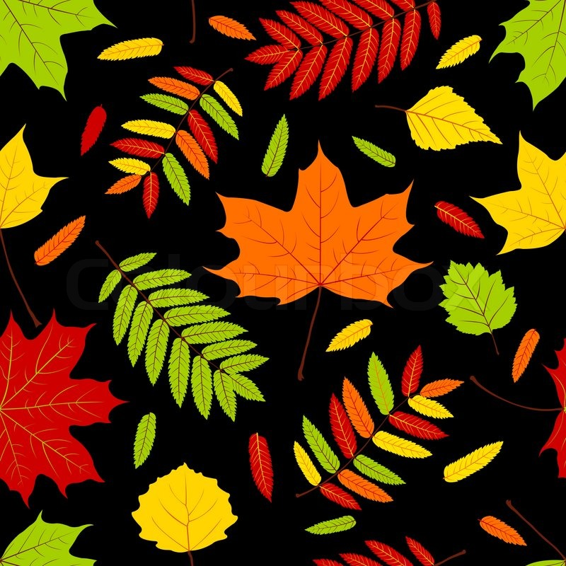 Maple Leaf Wallpaper For Fall Season Autumn Leaves On The Black Seamless Pattern Vector