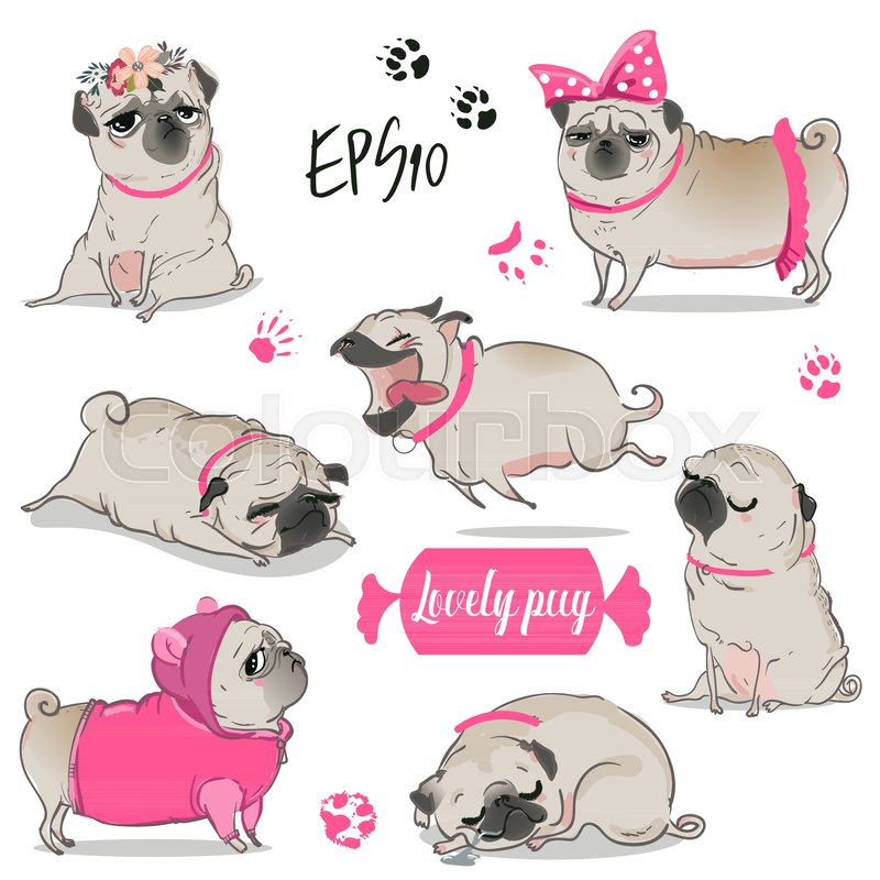 Cute Pug Wallpaper Cartoon Cute Pug Vector Collection Stock Vector Colourbox