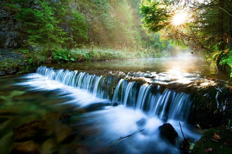 Free Fall Tree Wallpaper River Stream With Rocks Stock Photo Colourbox