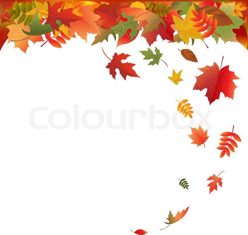 Free Fall Wallpaper Downloads Fallende Bl 228 Tter Auf Wei 223 En Hintergrund Vektor