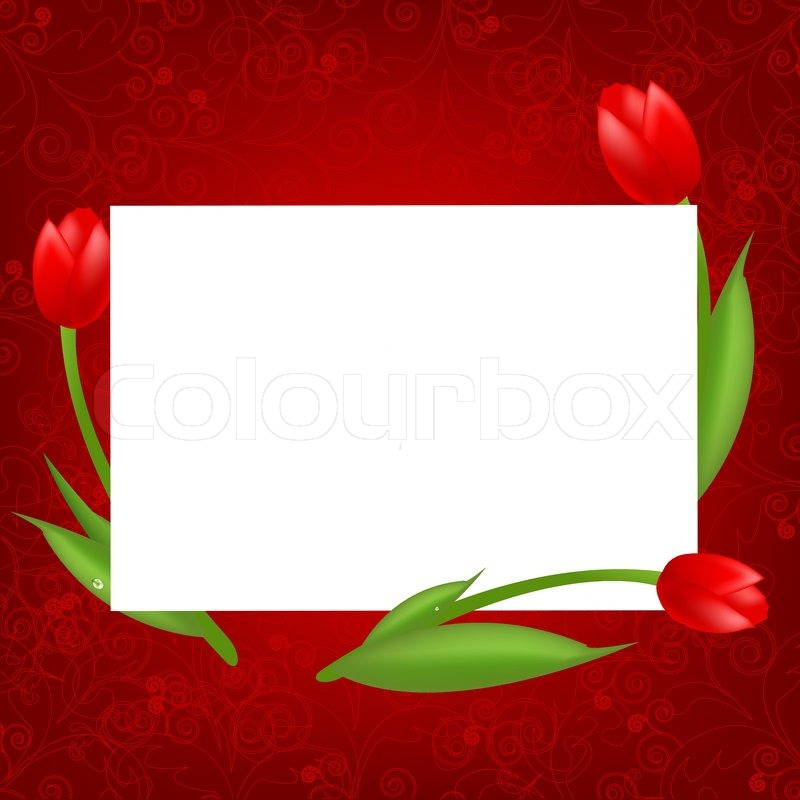 3 Tulips With Blank, Valentines Day Card, Vector Illustration