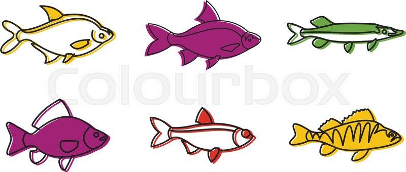 River fish icon set Color outline set Stock Vector Colourbox
