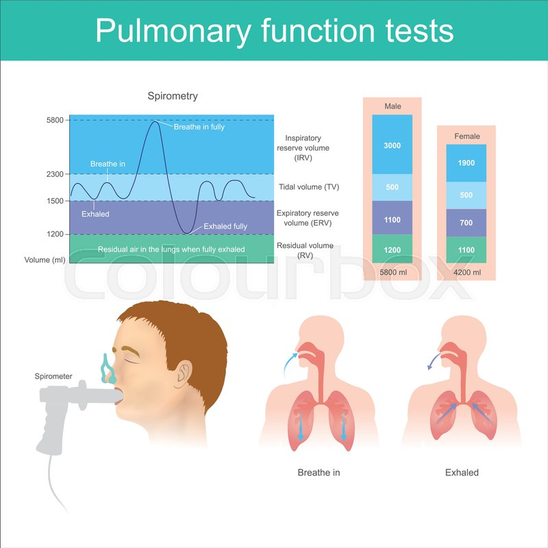 Pulmonary function tests Testing for Stock Vector Colourbox