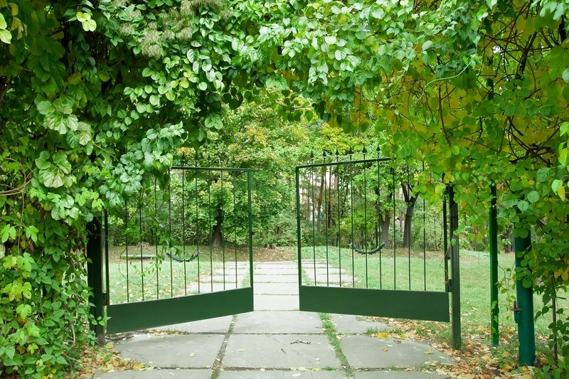 Grüne Gardine Iron Gate In A Beautiful Green Garden | Stock Photo ...