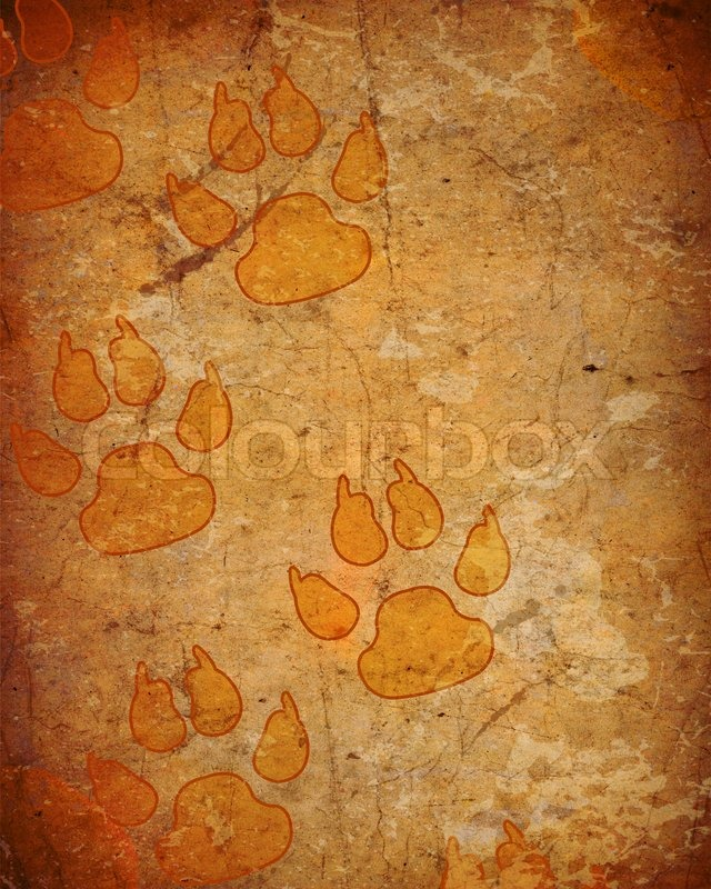 Cute Paw Print Wallpaper Background With Dog Paw Prints Stock Photo Colourbox