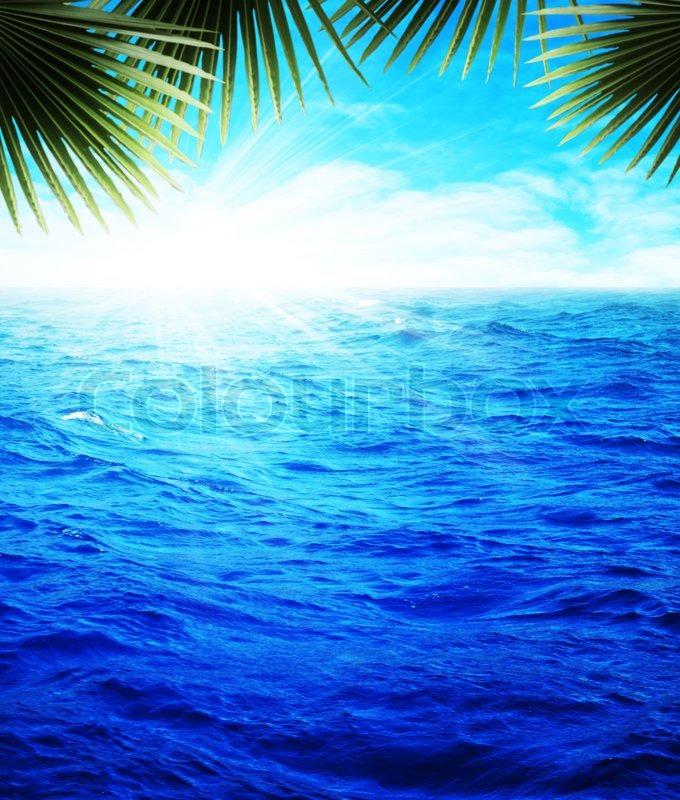 Nice summer day on the ocean beach, Stock Photo Colourbox