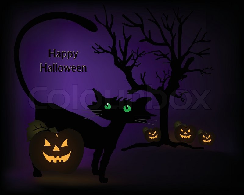 Halloween Black Cat Wallpaper Halloween Scene With Black Cat Pumpkins And Tree Vector