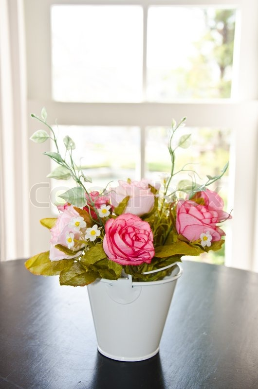 Pink Animal Wallpaper Flower Pot In Front Of A Window Stock Photo Colourbox