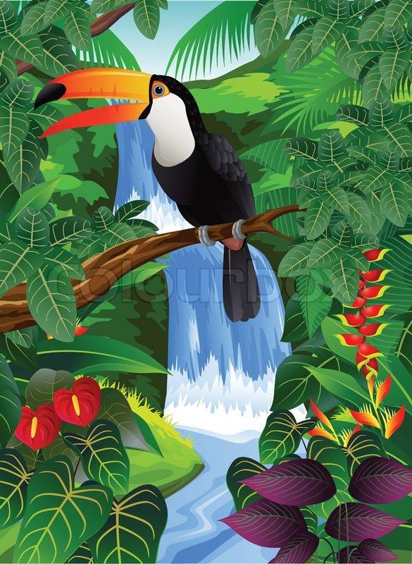 Safari Animal Wallpaper Toucan Bird Stock Vector Colourbox