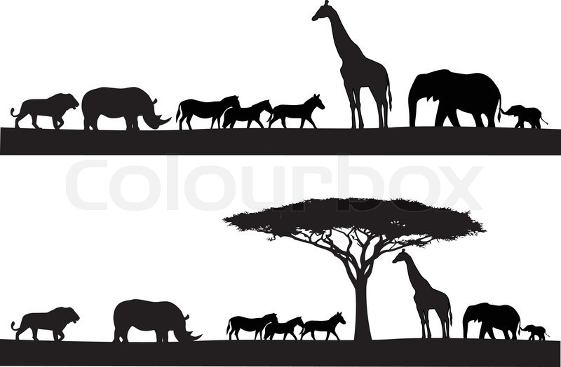 Safari Animal Silhouette Stock Vector Colourbox