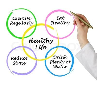 Diagram of healthy life | Stock Photo | Colourbox