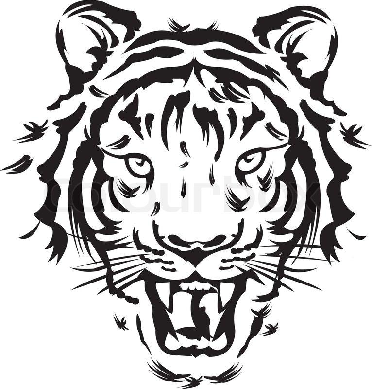Tiger Roar Stock Vector Images