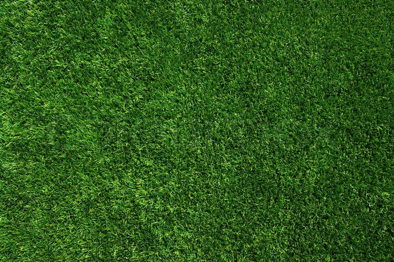 Background of a green grass Texture Stock Photo Colourbox