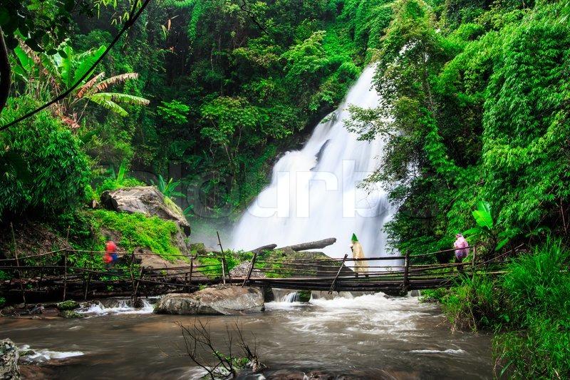 Fall Wooden Wallpaper Pha Dok Xu Waterfall In Rainforest At Doi Inthanon