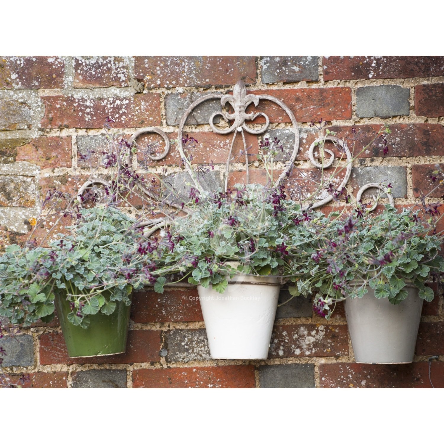 Wall Mounted Plant Holders Wall Mounted Pot Holder