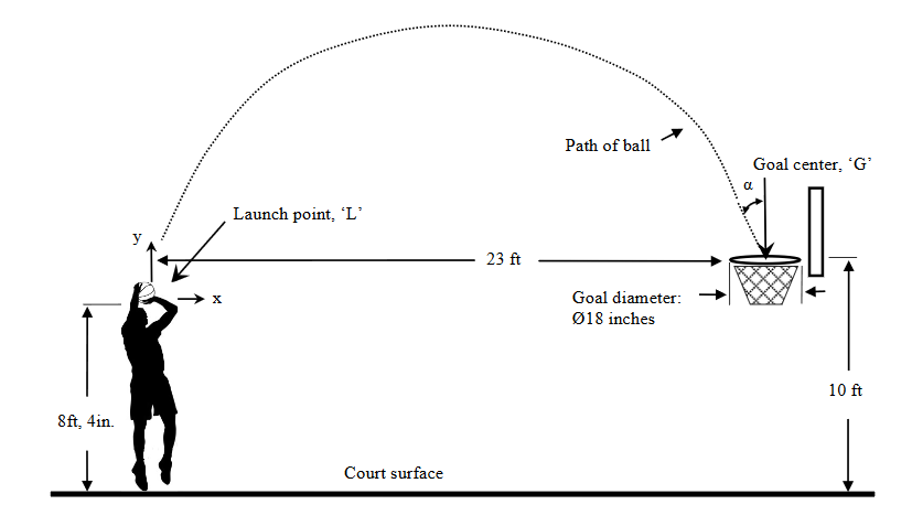 force diagrams physics in basketball
